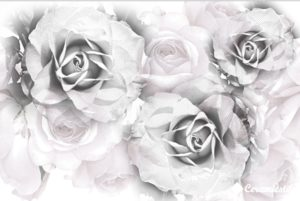 Conjunto Infinity Roses 40*60 — панно