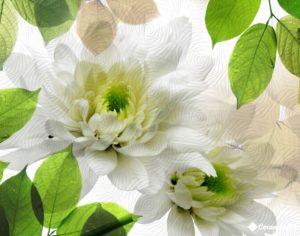 Decor Evoque (2 pz) Blanco 40*50 — декор